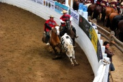 Chile - gauchos rodeo 24